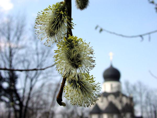Все православные праздники 2013 года